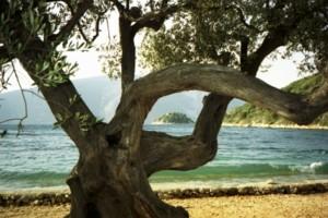 Ithaque, plage d'Ulysse