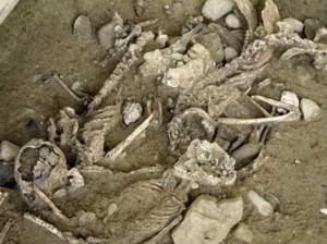Squelettes du Mormont
